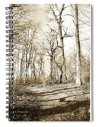 Path In A Forest Spiral Notebook