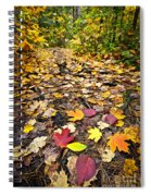 Path In Fall Forest Spiral Notebook
