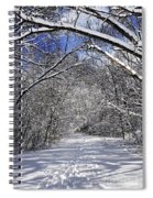 Path In Winter Forest Spiral Notebook