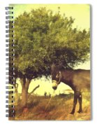 Pause For Thought Spiral Notebook