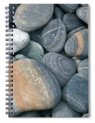 Pebbles Spiral Notebook