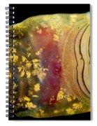 Pelado Mountains False Toad Tadpole Spiral Notebook