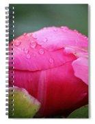 Buttoned Up Spiral Notebook