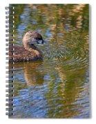 Pied Billed Grebe Spiral Notebook