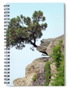 Pine Tree On A Rock Spiral Notebook