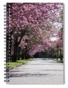 Pink Blooming Trees Spiral Notebook