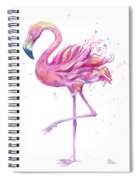 Pink Flamingo Watercolor Spiral Notebook