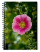 Pink Hollyhock Spiral Notebook