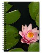 Pink Lotus Waterlily Spiral Notebook