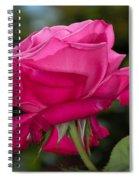 Pink Rose Spiral Notebook