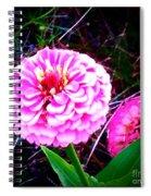 Pink Zinnia's Spiral Notebook