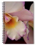 Pinky Pink Spiral Notebook