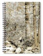 Pocono Mountain Stream, Pennsylvania, Digital Art Spiral Notebook