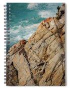Point Lobos California Spiral Notebook