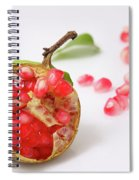 Pomegranate  Spiral Notebook
