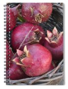 Pomegranates In A Basket Spiral Notebook