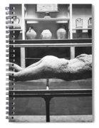 Pompeii: Plaster Cast Spiral Notebook