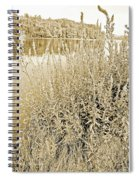Pond In The Bershire Mountains, Western Massachusett Spiral Notebook