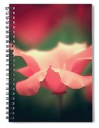 Poppy Intense Spiral Notebook