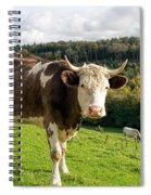 Posing For The Camera Spiral Notebook