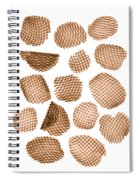 Potato Chips, X-ray Spiral Notebook