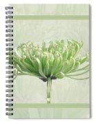 Pretty In Green Spiral Notebook