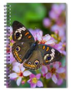 Happy Little Butterfly  Spiral Notebook