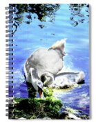 Psychedelic Mute Swan And Cygnet Feeding Spiral Notebook
