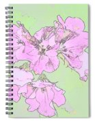 Purple And Green Spiral Notebook