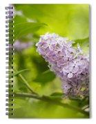 Purple Lilac Spiral Notebook
