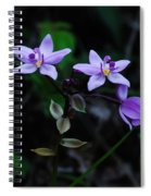 Purple Orchids 2 Spiral Notebook