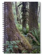 Quinault Rain Forest 3152 Spiral Notebook