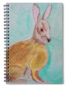 Rabbit Illustration Spiral Notebook