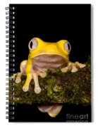 Red-eyed Treefrog, Xanthic Form Spiral Notebook
