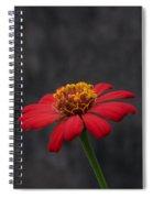 Red Flower 1 Spiral Notebook
