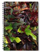Red Green  Leaves Spiral Notebook