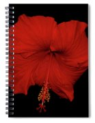 1- Red Hibiscus Spiral Notebook