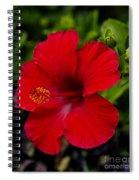 Red Hibiscus - Kauai Spiral Notebook