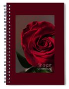 Red Rose Macro 6 Spiral Notebook