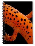 Red Salamander Spiral Notebook