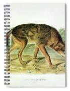 Red Texan Wolf Spiral Notebook