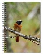 Redstart Spiral Notebook