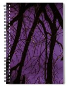 Spring Reflections Spiral Notebook