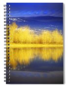 Reflections In Gold Spiral Notebook
