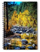 Reflections Of Gold Spiral Notebook