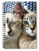 Rescued And Spoiled Spiral Notebook