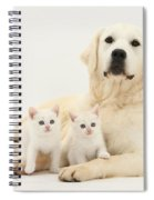 Retriever With Friendly Kittens Spiral Notebook