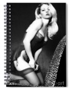 Retro Pinup Spiral Notebook
