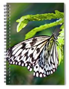 Rice Paper Butterfly 7 Spiral Notebook