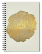 Rings Of A Tree Trunk Cross-section In Gold On Linen  Spiral Notebook